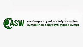 Website Project – Contemporary Art Society for Wales